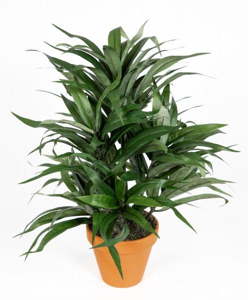 Dracena 42cm grün im Topf DA Kunstpflanzen künstliche Pflanzen Palmen Kunstpalme