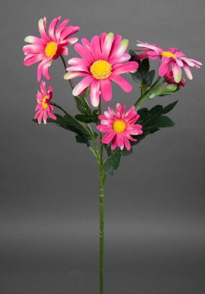 Margeritenzweig 60cm rosa-pink LM Kunstblumen künstliche Blumen Margerite