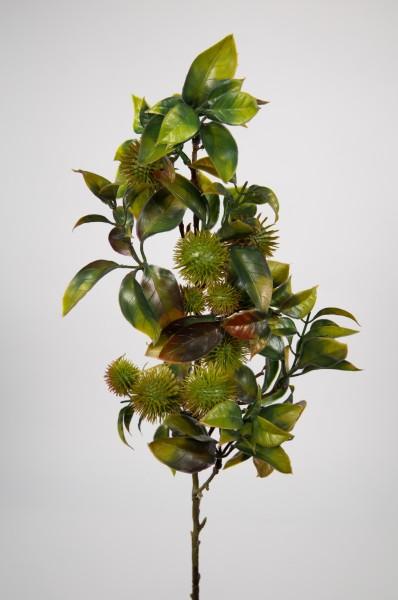 Rambutan-Zweig 60cm grün CG Kunstblumen künstliche Blumen Kunstzweig künstliche Zweige Kunstpfla