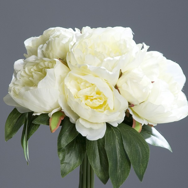 Pfingstrosenbund mit 8 Blüten 36cm weiß-creme DP Kunstlbumen künstliche Pfingstrosen Strauß