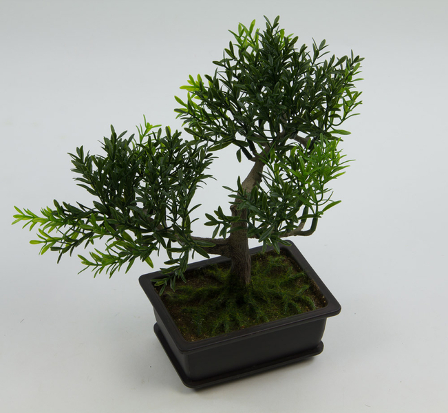 bonsai kyoto teeblatt kunstpflanze k nstliche pflanzen. Black Bedroom Furniture Sets. Home Design Ideas