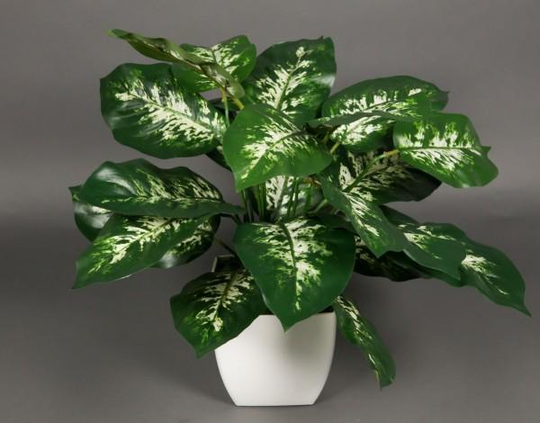 Dieffenbachia 45cm im weißen Dekotopf AR Kunstpflanzen künstliche Pflanzen