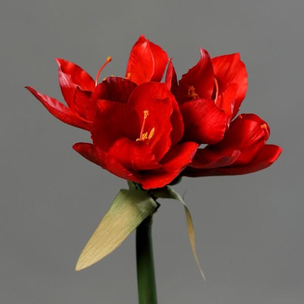 Amaryllis Real Touch 36cm rot DP Kunstblumen künstliche Blumen Pflanzen