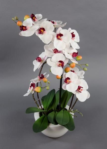 Orchidee Real Touch 58x28cm weiß-bordeaux in weißer Keramikschale GA Kunstblumen künstliche Blumen