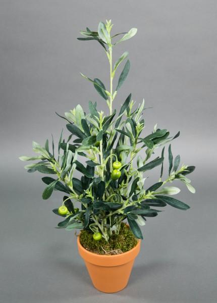 Olivenbusch mit Früchten 48cm im Topf PM Kunstpflanzen künstliche Pflanzen Olive Olivenpflanze