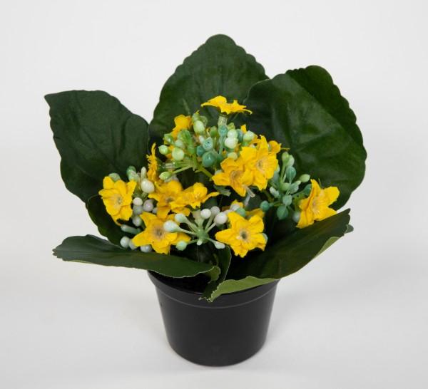 Kalanchoe 12cm gelb im Topf JA Kunstblumen künstliche Blumen Pflanzen Kunstpflanzen