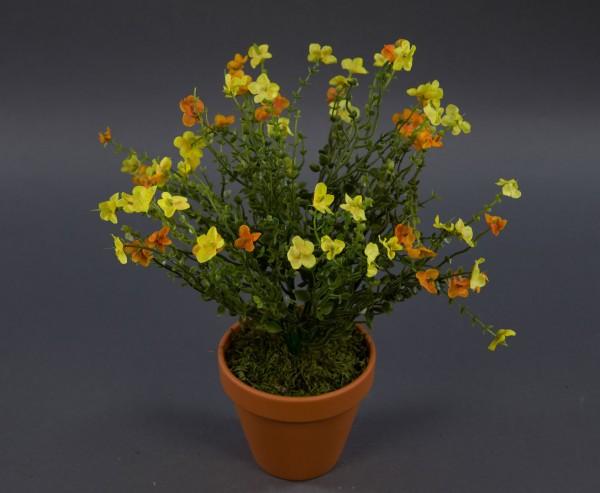 Vergissmeinnicht-Busch 36cm gelb-orange im Topf DP Kunstpflanzen künstliche Blumen Kunstblumen