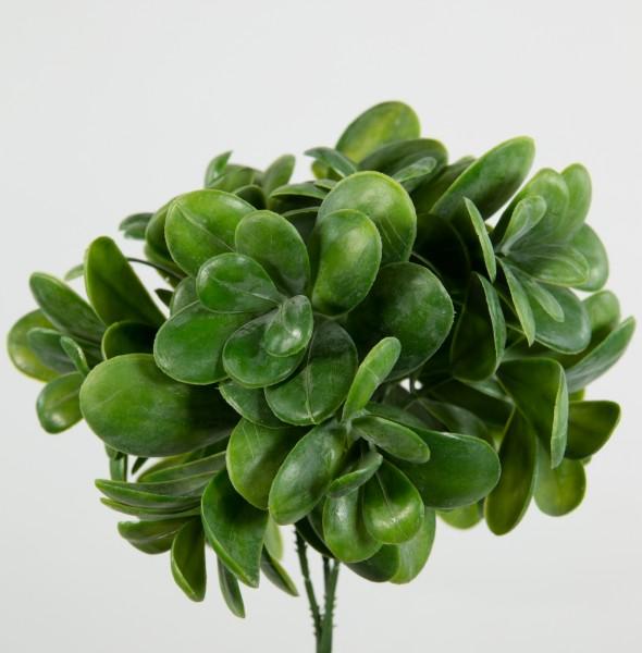 3 Stück Geldbaum-Pick 20cm grün LM Kunstpflanzen Kunstzweig künstlicher Zweig