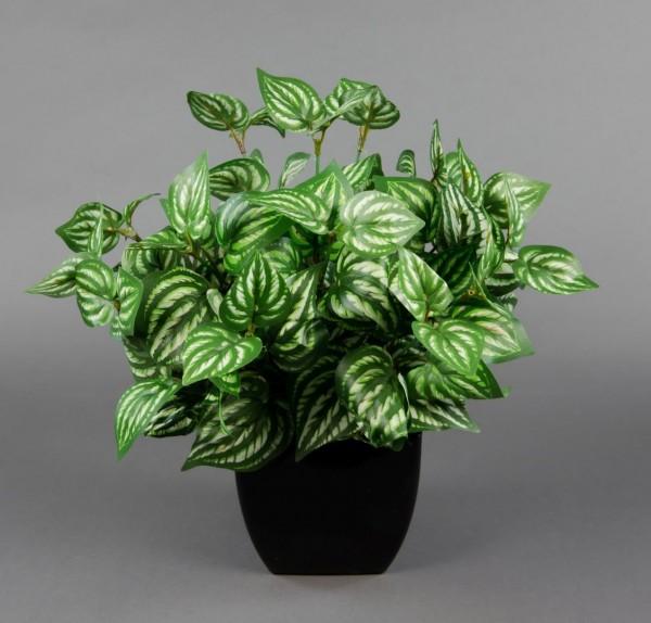 Kunstpflanzen Grasbusch Dekogras Gras bemehlt 42x36cm in weißer Keramikvase