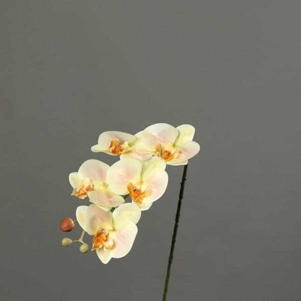 Orchideenzweig Real Touch 52cm salmon DP Kunstblumen künstliche Orchidee Orchideen Blumen