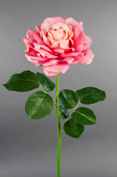 Große Rose Nature 70x16cm rosa CG Kunstblumen künstliche Rose Rosen Blumen Seidenblumen