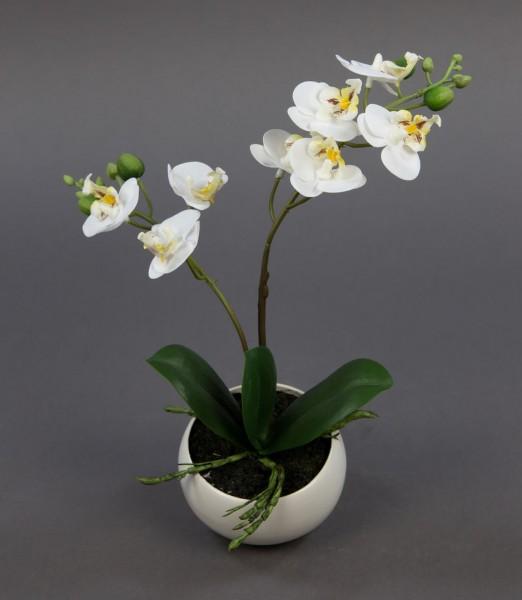Orchidee Real Touch 28cm weiß in weißer Keramikvase DP künstliche Orchideen Kunstpflanzen Kunstblume