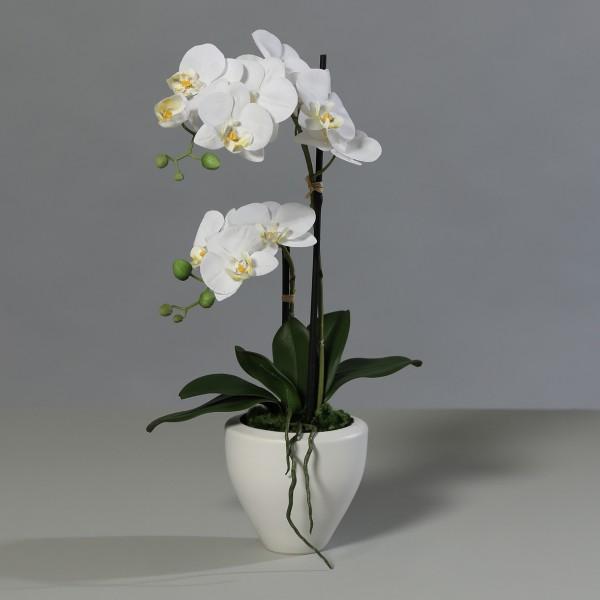 Orchidee Real Touch 62cm weiß im weißen Keramiktopf DP Kunstblumen künstliche Blumen