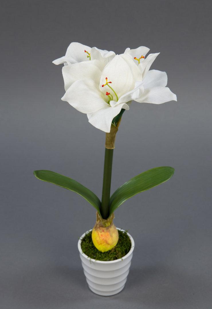 Amaryllis Pflanze 32cm Weiss Im Weissen Dekotopf Nt Kunstliche