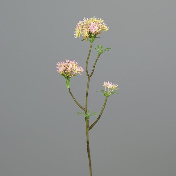 Bouvardienzweig 55cm rosa-creme GA Kunstblumen künstliche Bowardien Bouvardien Blumen Zweige