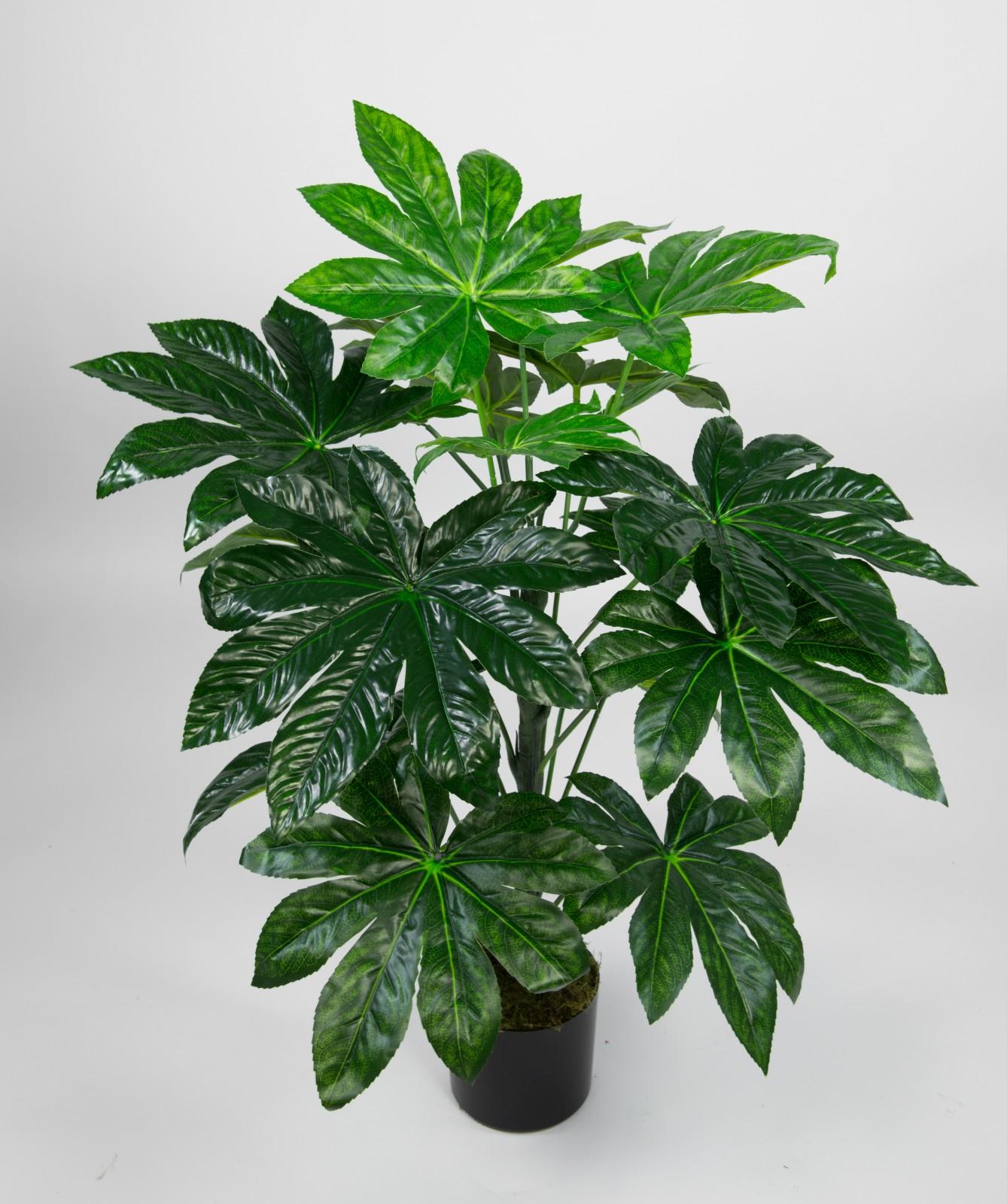 Aralie Real Touch 100cm grün im Topf ZJ Kunstpflanzen künstliche ...