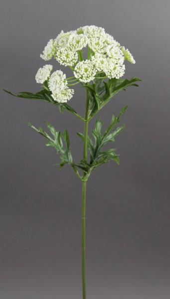 Wilde Möhre 54cm weiß-creme PF Kunstblumen kuenstliche Blumen