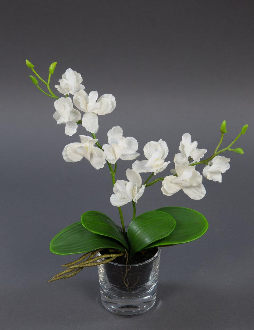 orchidee in glasvase 30cm wei ga kunstblumen k nstliche. Black Bedroom Furniture Sets. Home Design Ideas