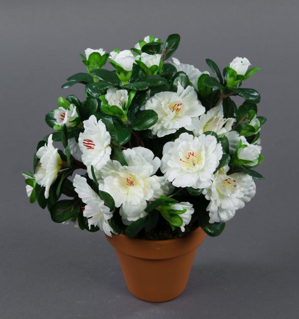 azalee 24cm wei im topf lm k nstliche blumen pflanzen kunstpflanzen kunstblumen neuheiten. Black Bedroom Furniture Sets. Home Design Ideas