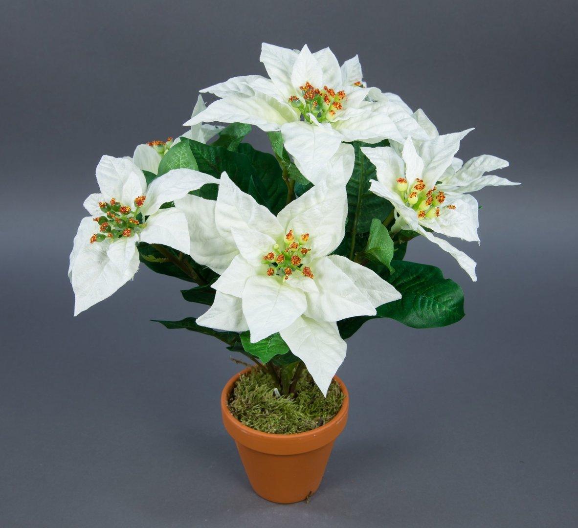 weihnachtsstern 42cm wei im topf ar k nstliche pflanze blumen kunstpflanzen kunstblumen. Black Bedroom Furniture Sets. Home Design Ideas