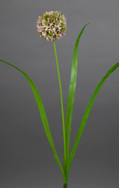 Allium mit Blätter 42cm helllila FT Kunstblumen künstliche Blumen Alliumkugel