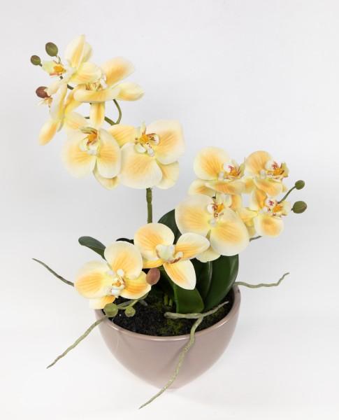 Orchidee 38x26cm gelb-salmon in brauner Keramikschale DP Kunstblumen künstliche Blumen Phalaenopsis