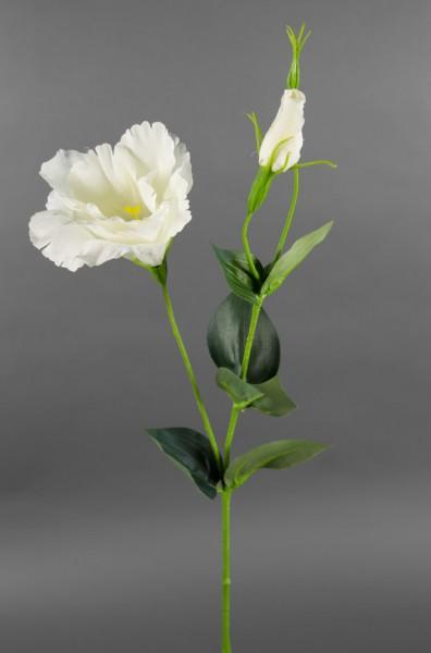 Lisianthus / Eustoma 60cm weiß-creme CG Kunstblumen Seidenblumen künstliche Blumen