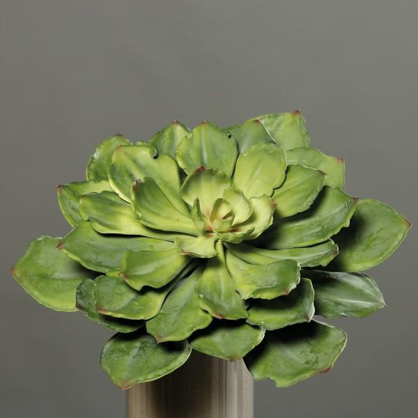 Sukkulente 34cm grün DP Kunstpflanzen künstliche Sukkulenten Pflanzen