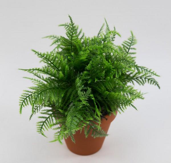 Farnbusch 22cm im Topf LM Kunstpflanzen künstlicher Farn Farnbusch Farnpflanze