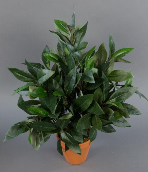 Lorbeerbusch 45cm im Topf DA Kunstpflanzen künstlicher Lorbeer