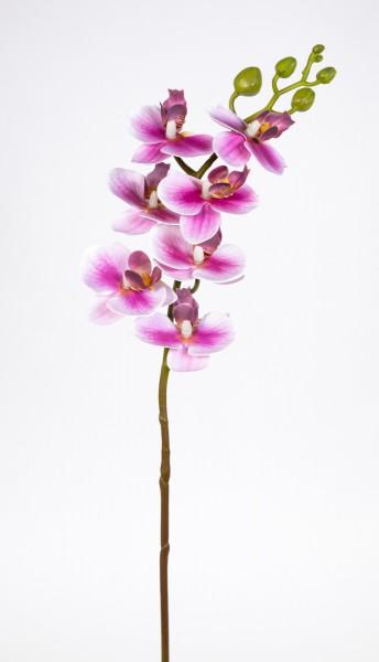 Orchideenzweig Real Touch 62cm pink-weiß ZJ Kunstblumen künstliche Orchidee Orchideen Blumen