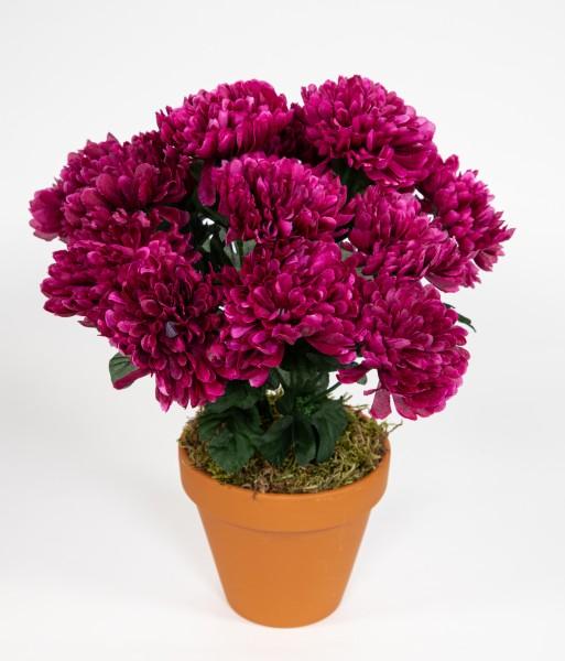 Chrysantheme 30cm fuchsia im Topf DP Kunstpflanzen künstliche Pflanzen Blumen Kunstblumen