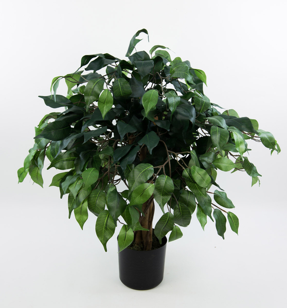 ficus benjamini 60cm gr n da k nstlicher baum kunstbaum kunstpflanzen ficus kunstb ume. Black Bedroom Furniture Sets. Home Design Ideas