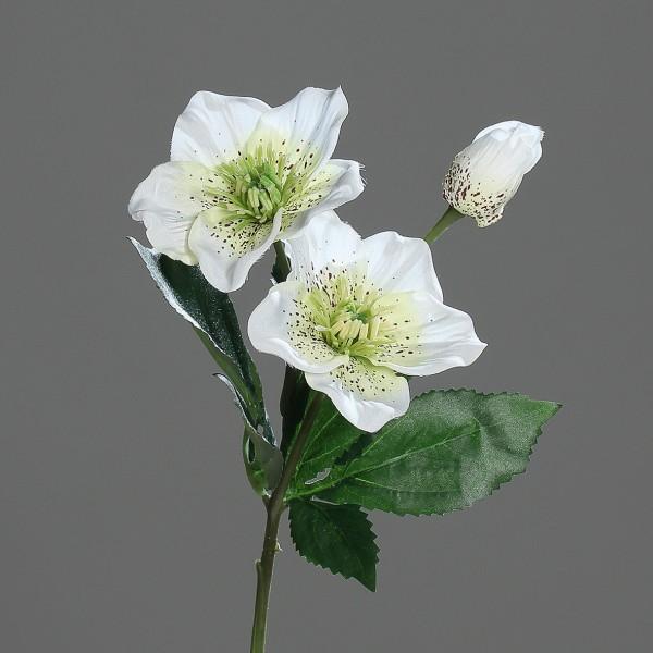 Christrose 34cm creme-weiß DP Kunstblumen künstliche Blumen Christrosenzweig Helleborus