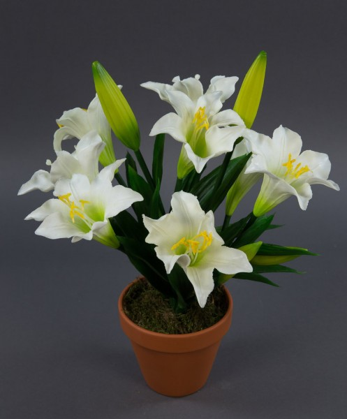 Lilienpflanze Latex 36cm weiß im Topf GA Kunstpflanzen künstliche Lilie Pflanzen Blumen Kunstblumen