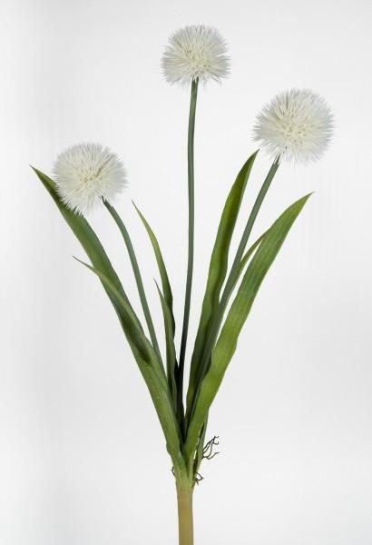 Alliumpflanze 60cm weiß -o.T.- GA Kunstpflanzen Kunstblumen künstliche Pflanzen Blumen Allium