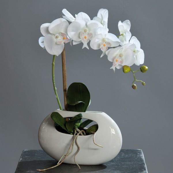 Orchidee 60cm weiß in weißer Keramikvase DP Kunstblumen künstliche Blumen Kunstpflanzen
