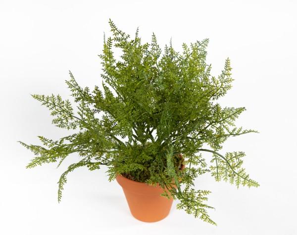 Farnbusch 26cm im Topf FI Kunstpflanzen künstlicher Farn Farnbusch Farnpflanze