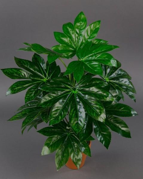 Aralie Real Touch 60cm grün im Topf ZJ Kunstpflanzen künstliche Pflanzen Aralienpflanze
