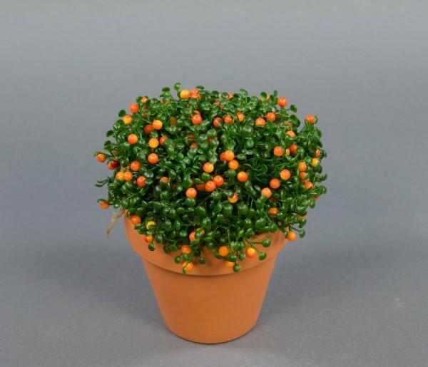 Nertera-Pflanze orange 15cm im Topf PF künstliche Pflanzen Kunstpflanzen Kunstblumen Korallenbeeren