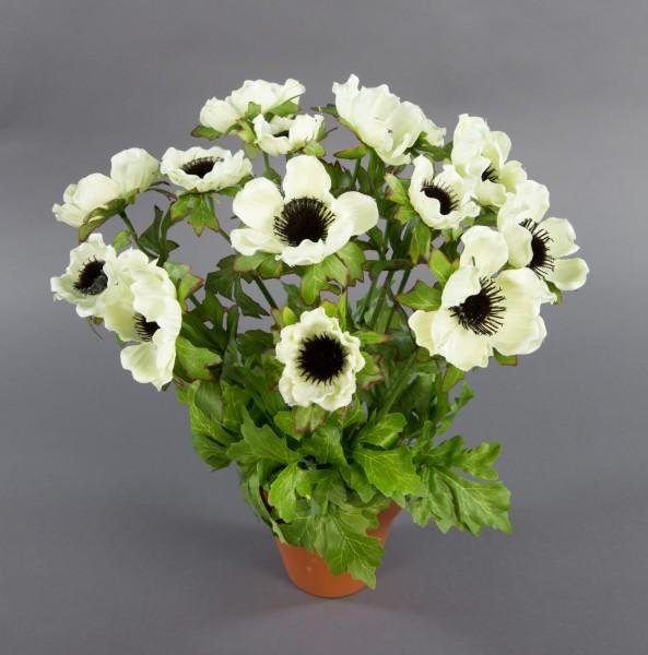 Anemonenbusch 36cm weiß-creme LM Kunstpflanzen künstliche Anemonen Pflanze Blumen Kunstblume