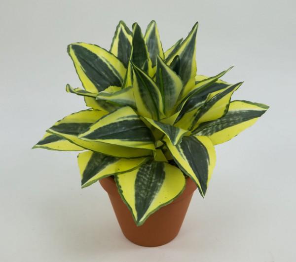 Sansevieria 24cm gelb-grün im Topf PF Kunstpflanzen künstliche Pflanzen