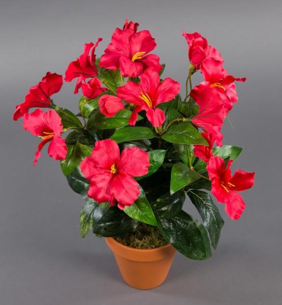 Hibiskus 40cm rot im Topf ZF künstliche Pflanzen künstlicher Eibisch Kunstblumen Kunstpflanzen