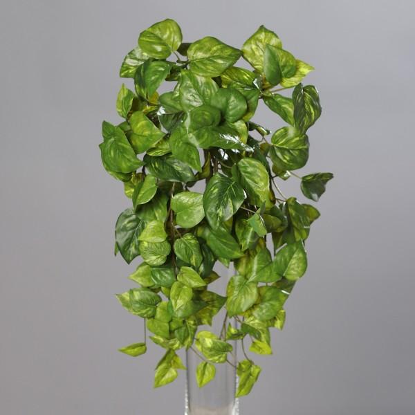 Photosranke Real Touch 40cm DP Kunstpflanzen künstliche Pflanzen Ranken Photosbusch Photos