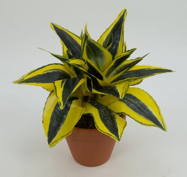 Sansevieria 24cm gold-grün im Topf PF Kunstpflanzen künstliche Pflanzen