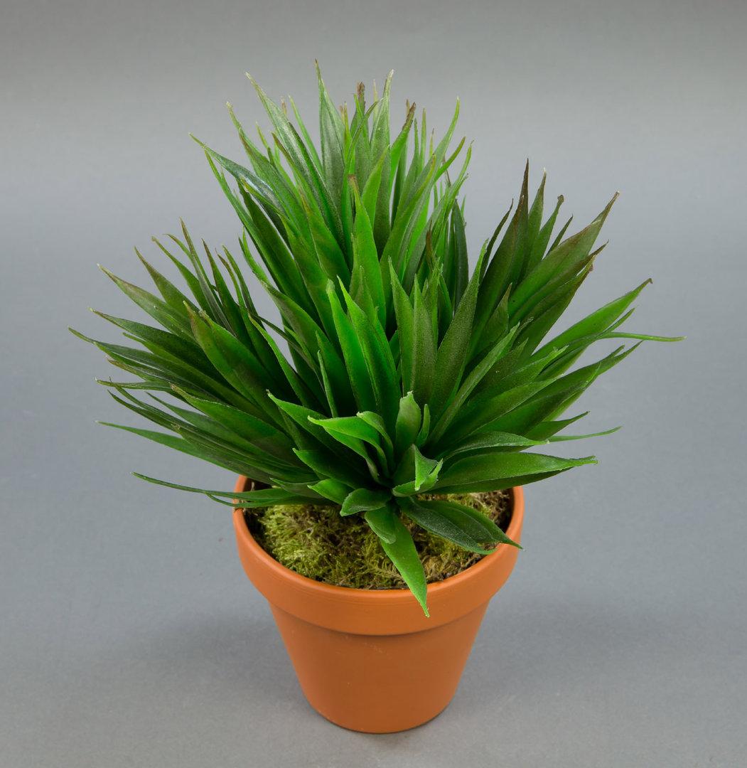 kanarischer agavenbusch 28cm im topf ga k nstliche agave k nstliche pflanzen kunstpflanzen. Black Bedroom Furniture Sets. Home Design Ideas