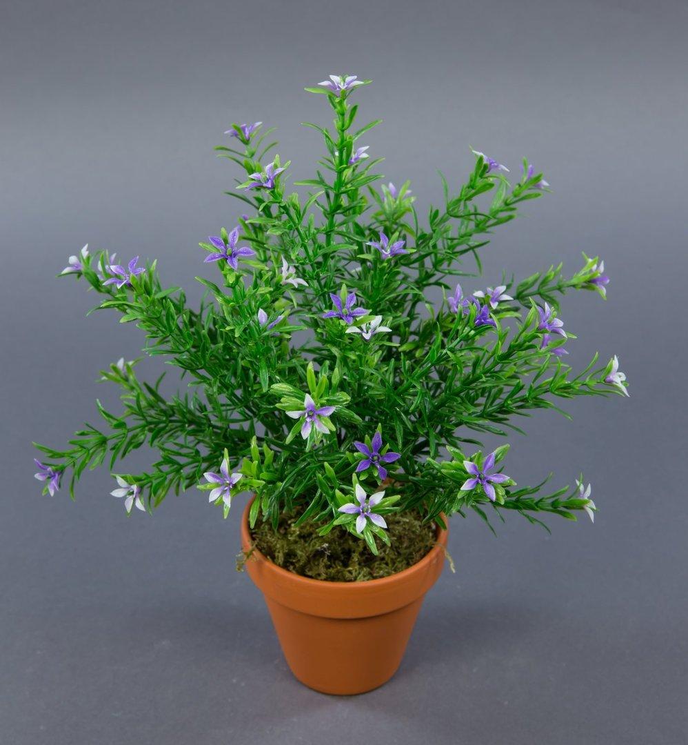 sternbl tenbusch 28cm lila im topf ga kunstpflanzen k nstliche pflanzen blumen kunstblumen. Black Bedroom Furniture Sets. Home Design Ideas