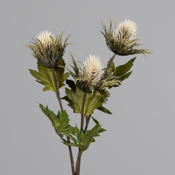Distelzweig mit 3 Köpfen 68cm creme DP Kunstblumen künstliche Blumen Distel Kunstzweig
