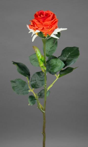 12 Stück Rose Elena 45cm orange PM Seidenblumen Kunstblumen künstliche Blumen Rosen