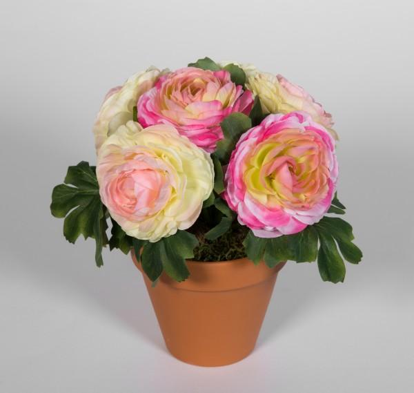 Ranunkel 22cm rosa-pink-creme im Topf LM Kunstpflanzen künstlichen Pflanzen Kunstblumen